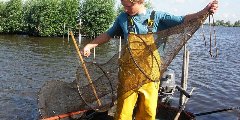 Eel Fishing